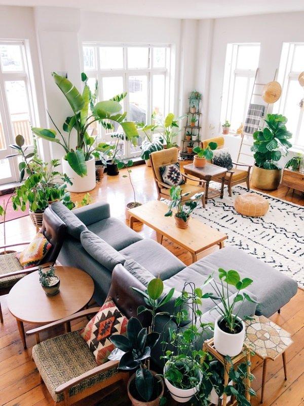 Цветы в горшках в скандинавском доме