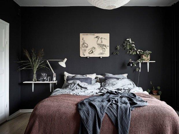 Спальня в скандинавском стиле: черная спальня с растениями на полках