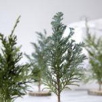 Новогодние украшения 2019: декоративные елки из хвои