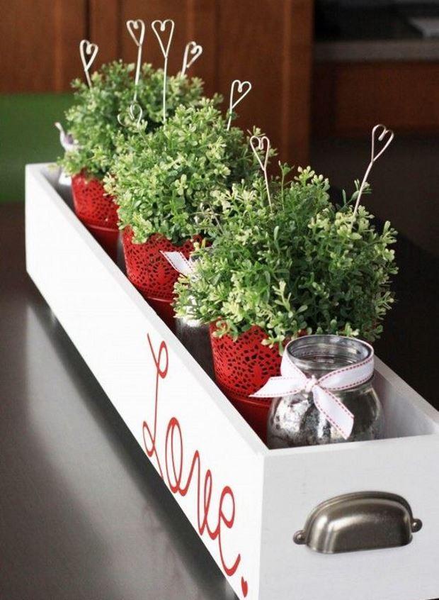 Идеи на День Святого Валентина: цветы в горшках