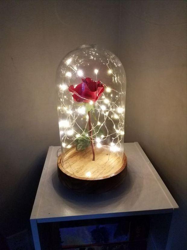 Идеи на День Святого Валентина: роза под куполом с гирляндами